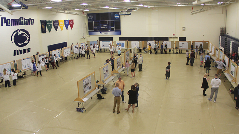 An overview of the poster presentations at the 2019 Undergraduate Research and Creative Activities Fair.