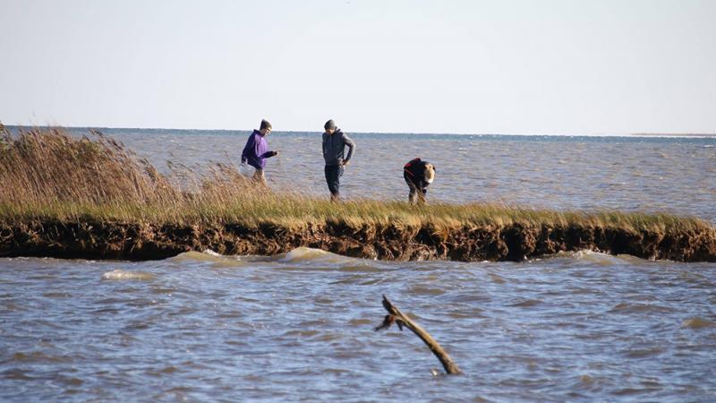 Students studying at Chesapeake Bay