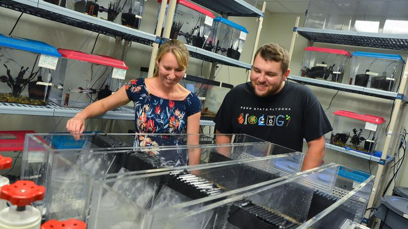 Cairsty DePasquale and Jordan Wolfkill study the movements of zebrafish