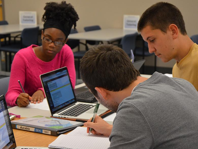 Students studying in the Eiche Library