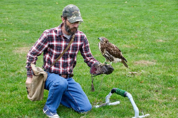 Sam Findley trains with a red-tailed hawk on the intramural fields at Penn State Altoona