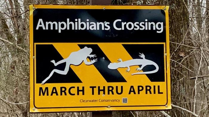 A sign in the Scotia Game Lands in Centre County reminds visitors to be careful and keep an eye out for amphibians.