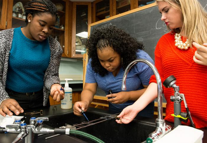Students work in a biology lab on campus