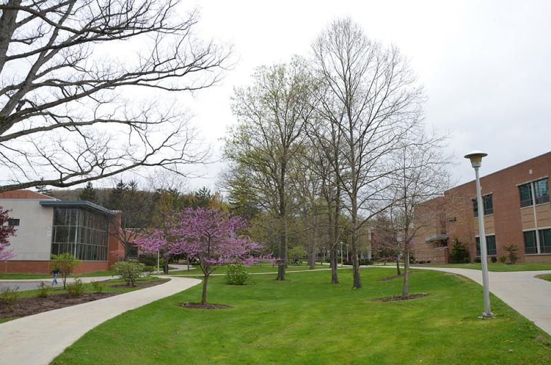 Spring 2017 on Campus