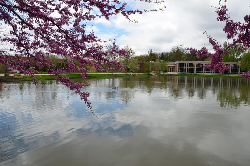 Spring 2017 on Campus