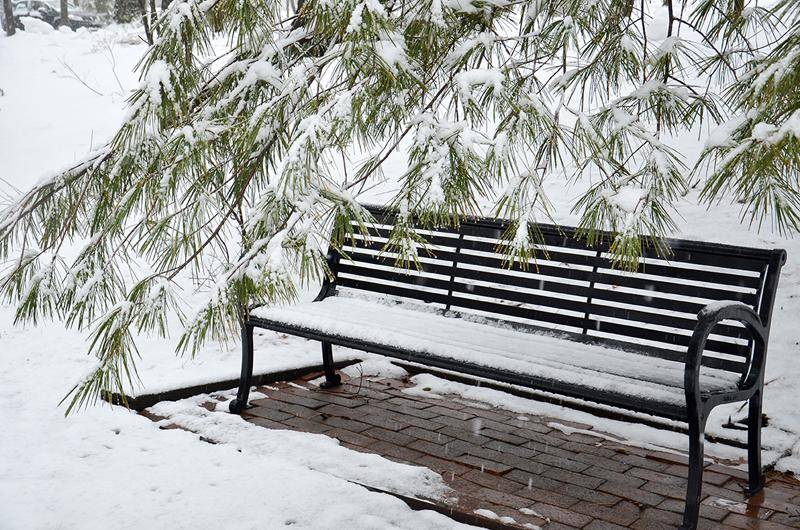 A snow-covered bench
