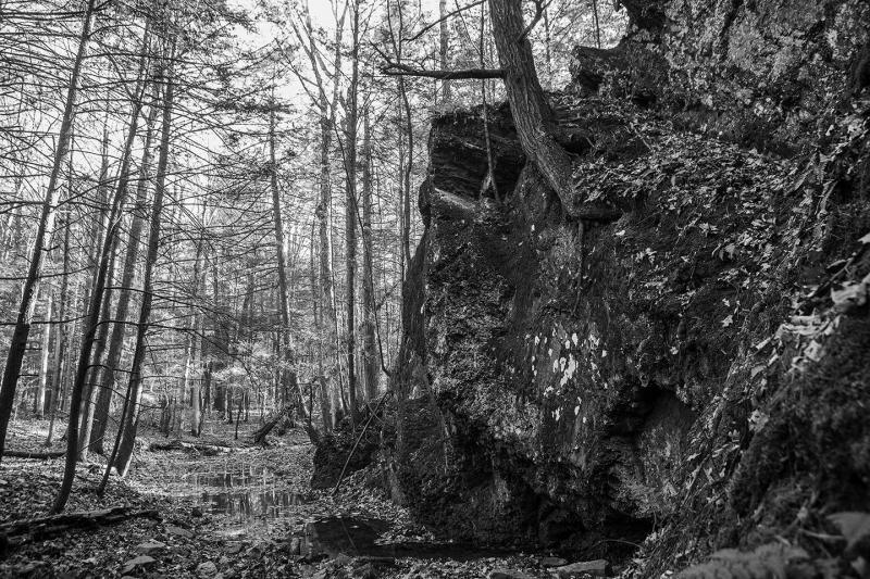 The Dark Cliffy Spot