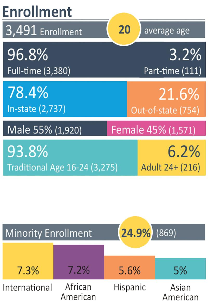 Enrollment Numbers infographic