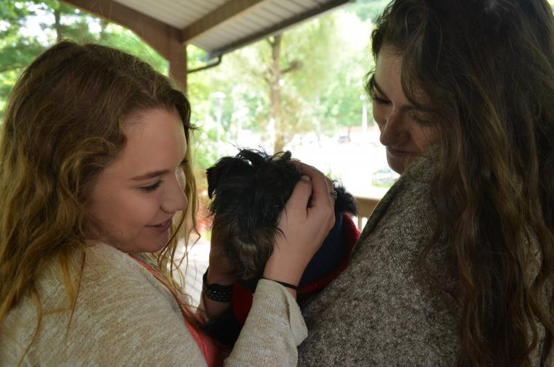 Students enjoying cuddle time with puppies at the Hugs for Hounds event