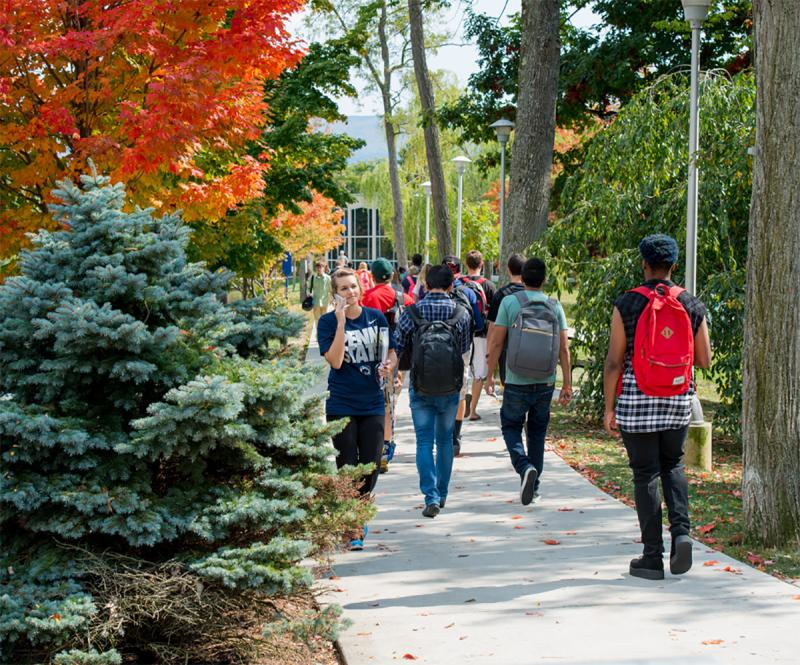 Students walk to and from class on campus