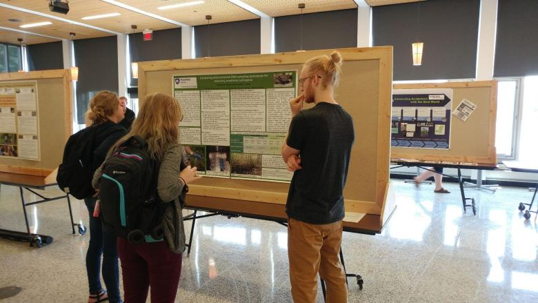 Students look at a presentation at the Student Expo