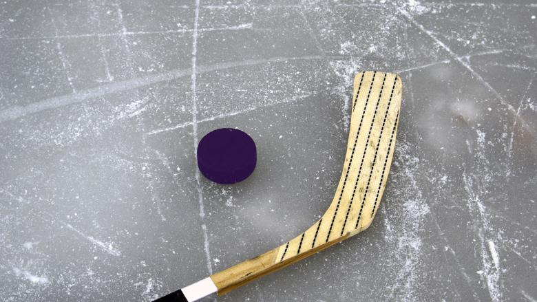 Purple Puck Night