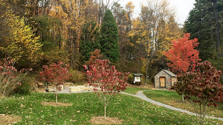 Thoreau Cabin and Seminar Forest at Penn State Altoona