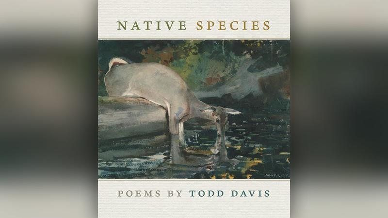 Book Cover: Native Species by Todd Davis
